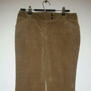🦊 ANN TAYLOR CORDUROY Pants
